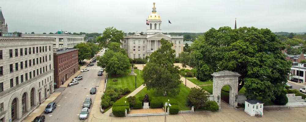 state_house_roof