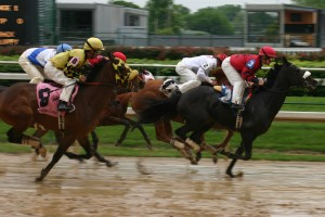 Horse_race,_Churchill_Downs_2008-04-18
